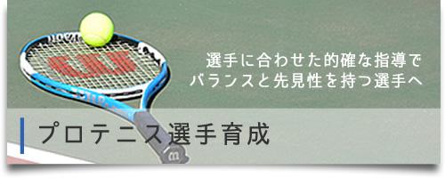 プロテニスプレイヤー育成